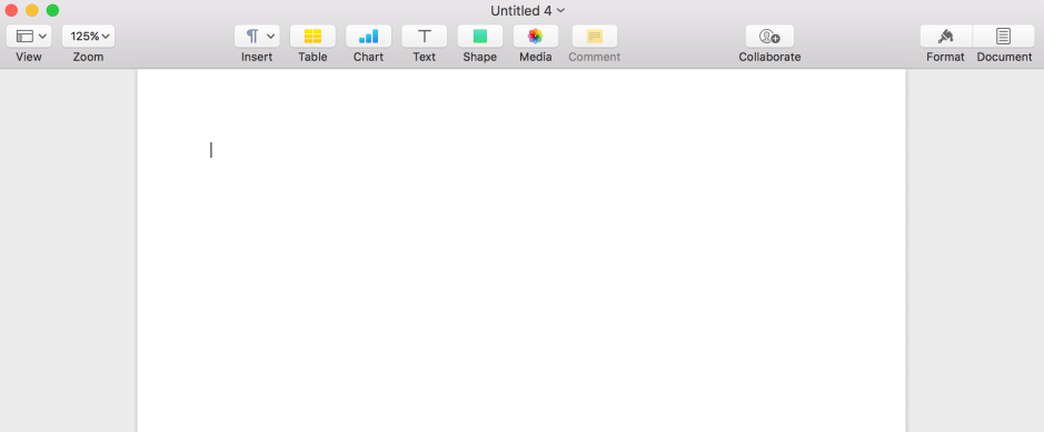 A blank screen in the word processor, Pages. The typing curser is at the top left of the open page.