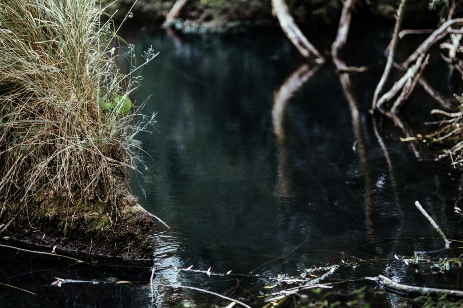 An area of shallow water in a creek.